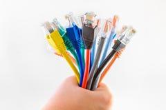 Färgrika Ethernetkablar Royaltyfri Fotografi