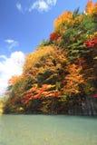 Färgrika leaves i gullyen Matsukawa Royaltyfri Bild