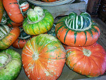 Färgrika Odd Shaped Pumpkins Arkivfoto