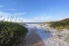 Früher Morgen-Weg zum Strand Stockfotos
