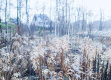 Früher Winter und erster eisiger Tag in einer Landschaft zentralen Ru Lizenzfreies Stockbild
