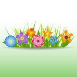 Frühling blüht Vektorillustration Stockfotos