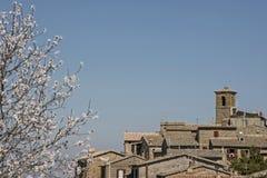 Frühling in Orvieto Royalty Free Stock Photos