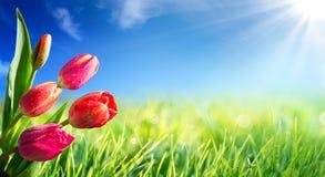Frühling und Ostern-Hintergrund mit Tulpen Stockbilder