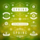 Frühlings-typografischer Design-Satz Retro- und Weinlese-Art-Schablonen Lizenzfreie Stockfotografie