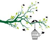 Frühlingsbaum mit Birdcage und küssen Vögeln Stockfotos