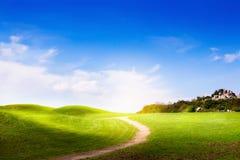 Frühlingslandschaft mit grünem Gras und Wolken Stockfotografie