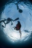 Fri dykare som stiger ned till dephten Arkivbild