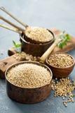 Fri matlagning för gluten med quinoaen arkivfoton