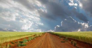Fri State Farm panorama royaltyfria bilder