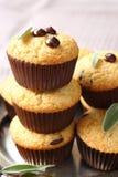 Fria muffin för läcker hemlagad gluten med chokladdroppar Arkivbilder