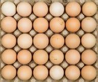 Fria områdehönaägg i äggmagasin Arkivfoton