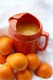 Frialdad anaranjada Foto de archivo libre de regalías
