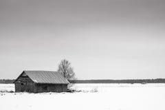 Frialdad de febrero Foto de archivo libre de regalías
