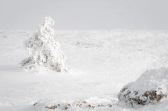 Frialdad del invierno Foto de archivo