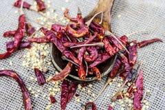 Frialdad roja popular del patta de Resham en bolso del yute Frialdad roja en la cucharada de madera Imagen de archivo