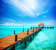 Férias no paraíso tropico Fotos de Stock