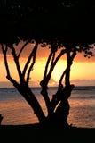 África, puesta del sol en Mont Choisy en Mauricio Fotos de archivo