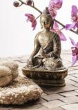 Fricción para el tratamiento del balneario del zen Imagen de archivo