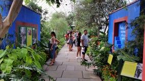 Frida Kahlo Art trädgård, livdel 2 19 Arkivbild