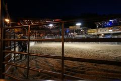 Friday Night Live Bull Riding at the Buffalo Chip Saloon royalty free stock images
