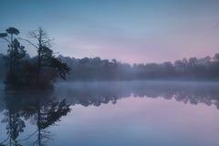 Fridfull soluppgång på skogsjön Arkivbilder
