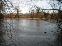 fridfullt vatten Royaltyfria Bilder