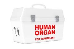 Fridge Box for transporting Human Donor Organs. 3d Rendering Stock Photo