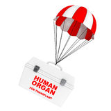 Fridge Box for transporting Human Donor Organs flying on Red and. White Parachute on a white background. 3d Rendering Stock Photography