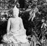 Fridsam Buddha som mediterar konstnärlig svartvit bild arkivbild