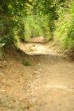 Fridsam bygdväg i Cheile Nerei naturlig reservation Arkivfoto