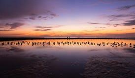 Fridsam färgglad soluppgånghimmel på havbadet Newcastle Australien royaltyfri fotografi