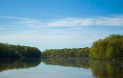 fridsam flod Royaltyfri Bild
