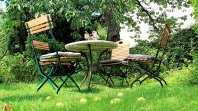 Fridsam gräs- för äpplenedgång för ny luft trädgård för hem arkivfoton