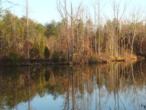 fridsam lake Royaltyfria Bilder