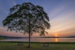 fridsam park Fotografering för Bildbyråer