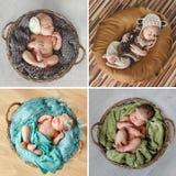 Fridsam sömn av ett nyfött behandla som ett barn, en collage av fyra bilder arkivbild