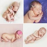 Fridsam sömn av ett nyfött behandla som ett barn, en collage av fyra bilder royaltyfri fotografi