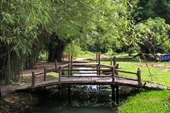 Fridsam trädgård med träbroar i bygd av Thailand Royaltyfria Foton