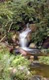 fridsam vattenfall Royaltyfri Fotografi