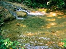 Fridsam vattenfall i skog fotografering för bildbyråer
