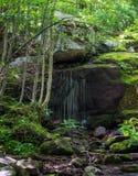 Fridsam vattenfall i skogen Fotografering för Bildbyråer