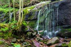 Fridsam vattenfall i skogen Arkivfoto