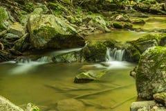 Fridsam vattenfall i skogen Royaltyfria Foton