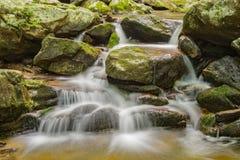 Fridsam vattenfall i skogen Arkivbilder