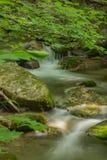 Fridsam vattenfall och träd Fotografering för Bildbyråer