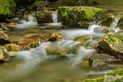 Fridsam vattenfall och träd Arkivfoto