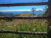 Fridsamma gröna berg som täckas av gräs under den klara blåa himlen Arkivbilder