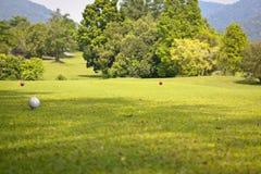 Fridsamt golfland royaltyfria bilder