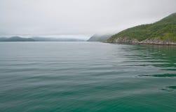 Fridsamt grönt fiordvatten royaltyfri bild